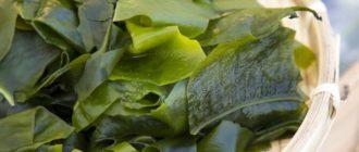 Питательная маска для тела из морской капусты