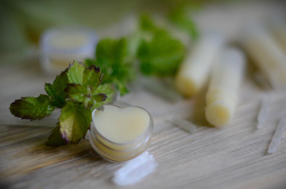 Домашний травяной бальзам для губ